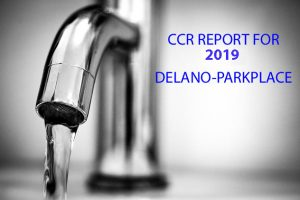 2019 CCR REPORTS